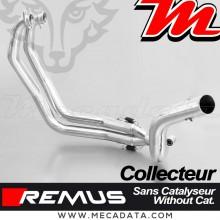 Collecteur d'échappement REMUS ~ BMW F 650 GS 2008-2012